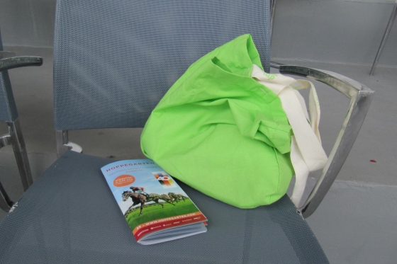 my knitting - double protected (orange sack, hiding in green bag).